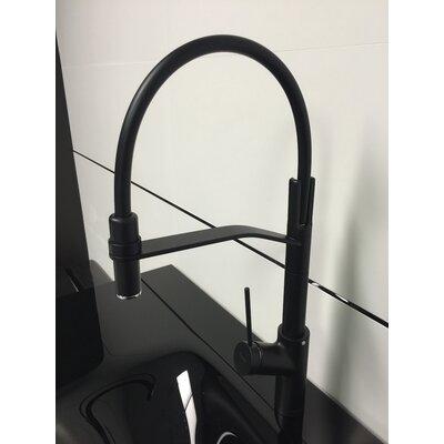 Viva Pro Single Handle Kitchen Faucet