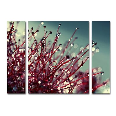 For You and Me 3 Piece Photographic Print on Wrapped Canvas Set Size: 24