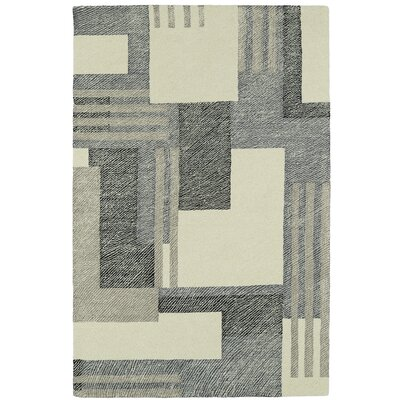 Hand-Tufted Gray/Beige Area Rug Rug Size: Rectangle 5 x 9