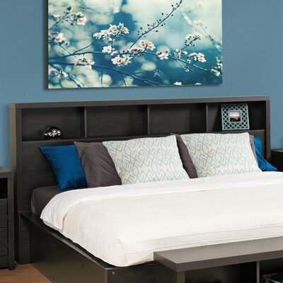 Reiby Bookcase Headboard Size: King