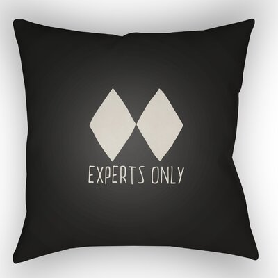 Indoor/Outdoor Throw Pillow Size: 20 H x 20 W x 4 D, Color: Black