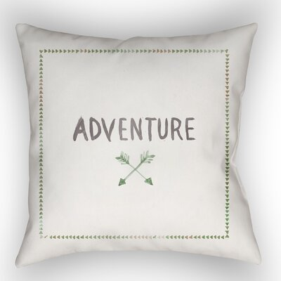Square Shaped Accent Indoor/Outdoor Throw Pillow Color: White/Green, Size: 20 H x 20 W x 4 D
