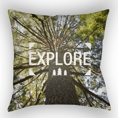 Green Accent Indoor/Outdoor Throw Pillow Size: 18 H x 18 W x 4 D