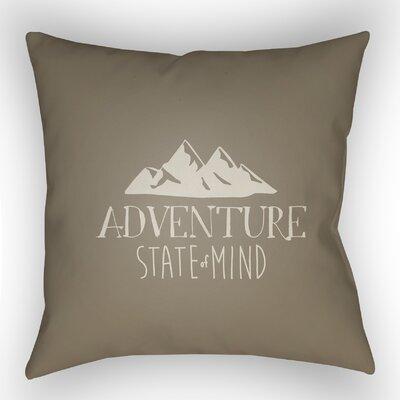 Indoor/Outdoor Throw Pillow Size: 18 H x 18 W x 4 D, Color: Brown