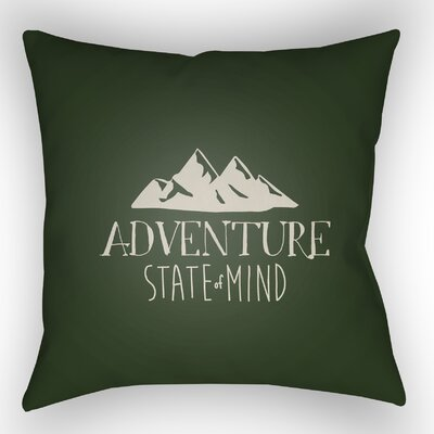 Indoor/Outdoor Throw Pillow Color: Green, Size: 20