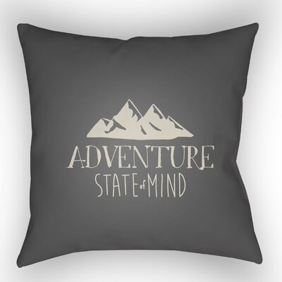 Indoor/Outdoor Throw Pillow Size: 18 H x 18 W x 4 D, Color: Gray
