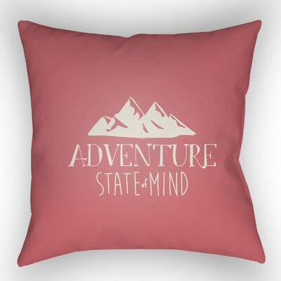 Indoor/Outdoor Throw Pillow Size: 18 H x 18 W x 4 D, Color: Pink