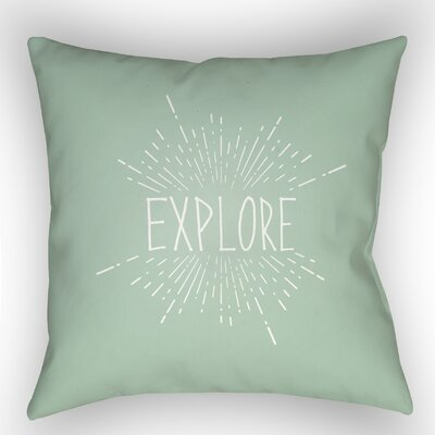 Indoor/Outdoor Throw Pillow Size: 20 H x 20 W x 4 D, Color: Green