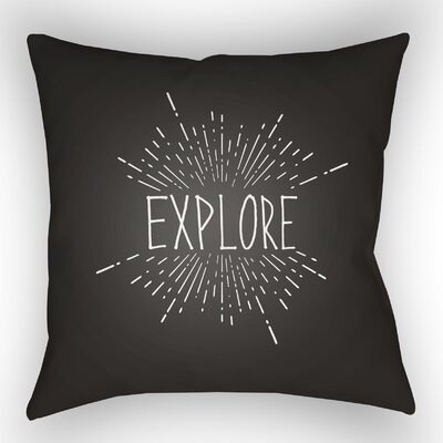 Indoor/Outdoor Throw Pillow Size: 18 H x 18 W x 4 D, Color: Black