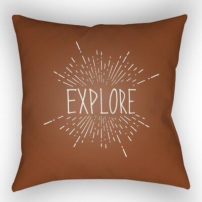 Indoor/Outdoor Throw Pillow Size: 18 H x 18 W x 4 D, Color: Brown
