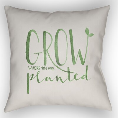 Indoor/Outdoor Throw Pillow Size: 20 H x 20 W x 4 D