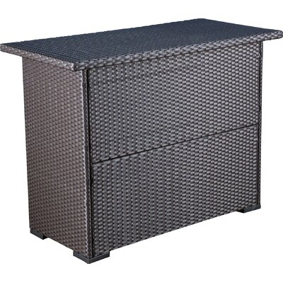Mcdaniel Outdoor Wicker Bar