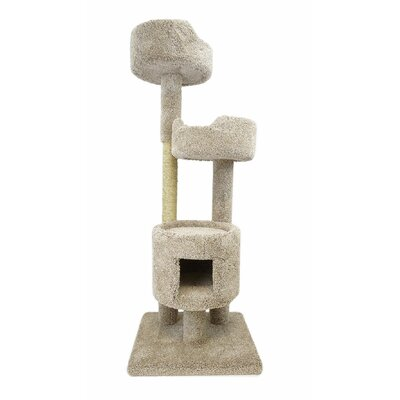 64 Cat Tree Color: Beige