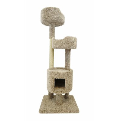 Desiree 64 Cat Tree Color: Brown