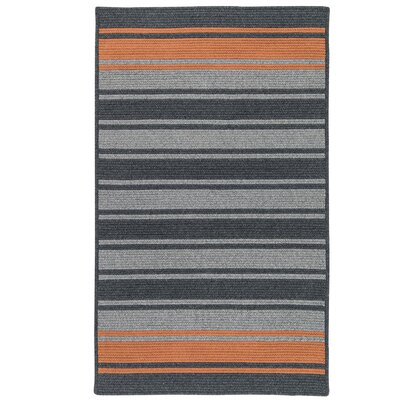 Caitlin Hand-Woven Charcoal Area Rug Rug Size: 6 x 9
