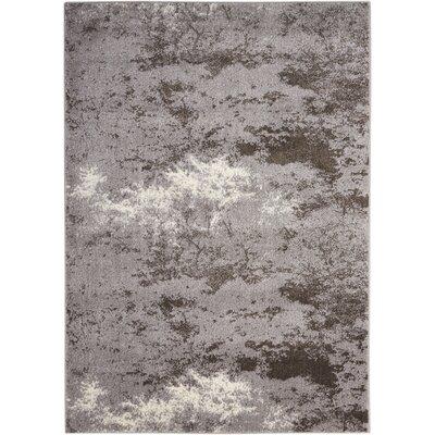 Alojzov Gray Area Rug Rug Size: 710 x 106