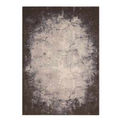 Anegada Ivory/Gray Area Rug Rug Size: 5'3