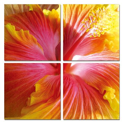 Hibiscus 4 Piece Photographic Print on Canvas Set