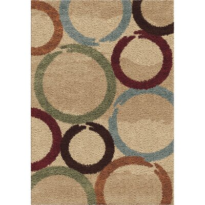 Andre Shag Area Rug Rug Size: 53 x 76