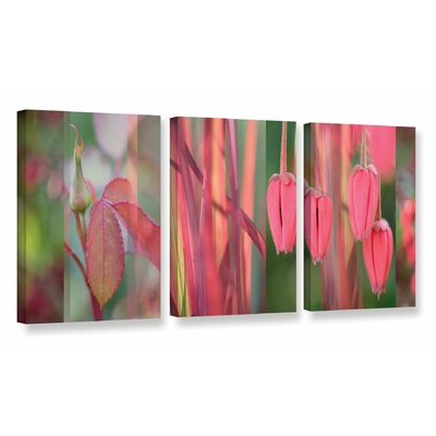 Coral Pink Garden 3 Piece Photographic Print on Wrapped Canvas Set Size: 18