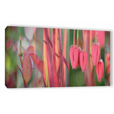 Coral Pink Garden  Photographic Print on Wrapped Canvas Size: 12