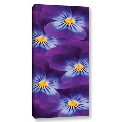 Purple Violets Graphic Art on Wrapped Canvas Size: 24