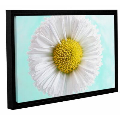 Daisy Mint  Framed Graphic Art on Wrapped Canvas Size: 12