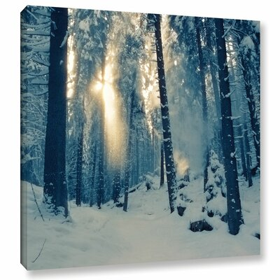 Winter Light Photographic Print on Wrapped Canvas