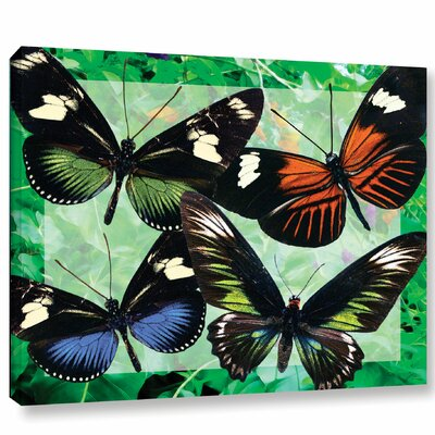 Multi Colored Butterflies Graphic Art on Wrapped Canvas Size: 14