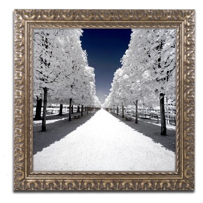 Another Look at Paris XV Framed Photographic Print