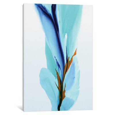 Spring's Calling Card Painting on Wrapped Canvas LATR2374 31883787