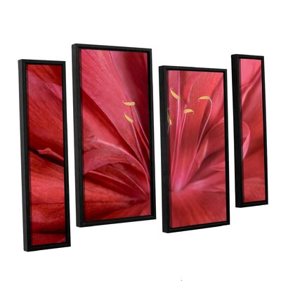 Peonia Insight I 4 Piece Framed Photographic Print on Canvas Set Size: 24
