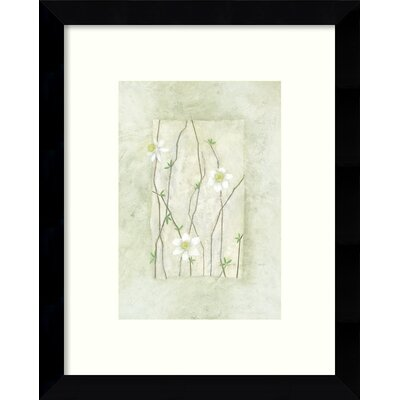 Entwined Daisies Framed Graphic Art