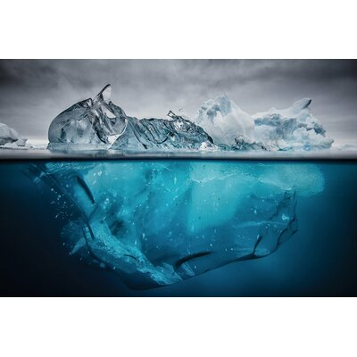Buoyancy Photographic Print on Wrapped Canvas Size: 12