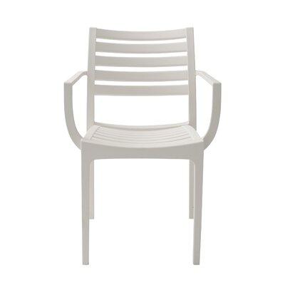 Alton Arm Chair (Set of 4) Finish: White