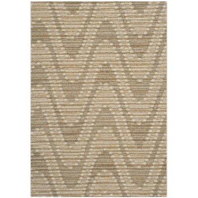 Jill Grey / Dark Grey Chevron Rug Rug Size: 52 x 76