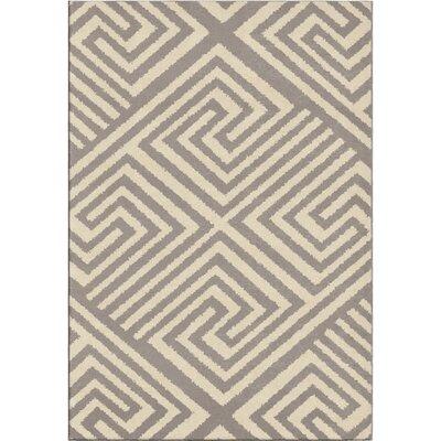 Erelina Gray/Beige Area Rug Rug Size: 53 x 76