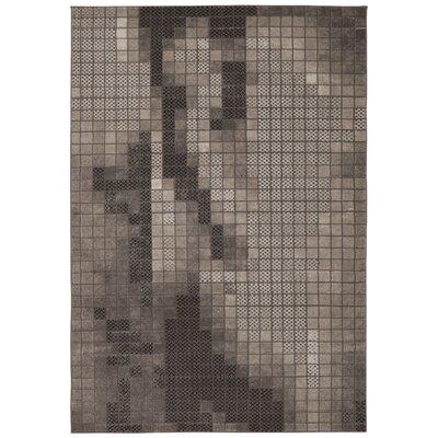 Ester Gray Rug Rug Size: 53 x 74