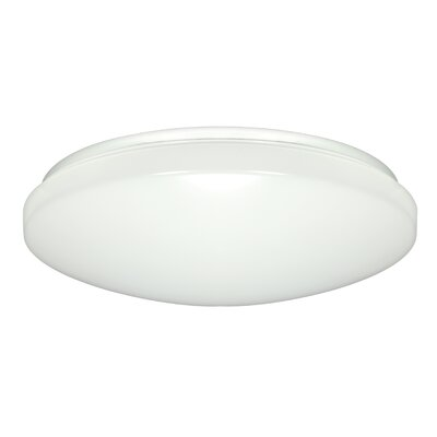 Frankie 1-Light Flush Mount