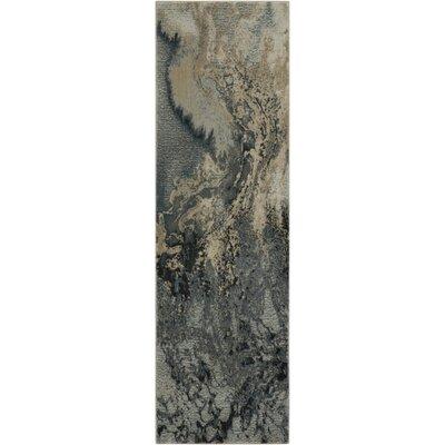 Mana Grey Area Rug Rug Size: Runner 22 x 76