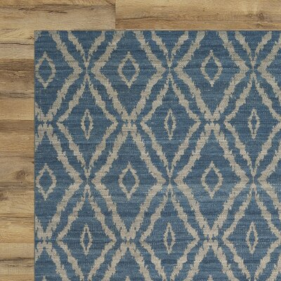 Amerina Hand-Woven Blue/Gray Area Rug Rug Size: Rectangle 4 x 6