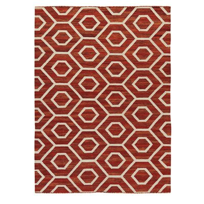 Roland Burnt Orange Area Rug Rug Size: Rectangle 711 x 5