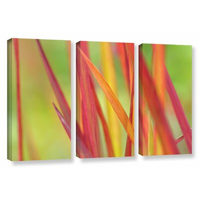 Winter 3 Piece Photographic Print on Wrapped Canvas Set