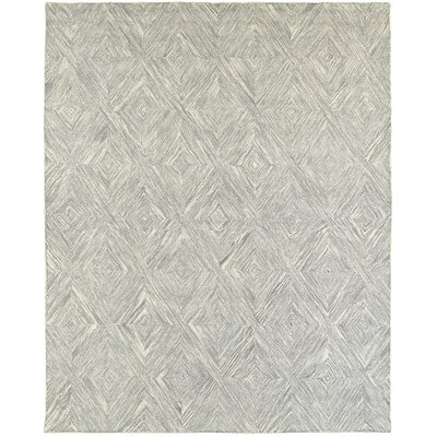 Cecelia Hand-Crafted Gray Area Rug Rug Size: 79 x 99