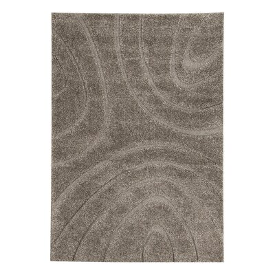 Clinton Brown Area Rug Rug Size: 5 x 7