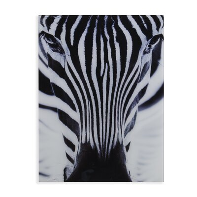 'The Zebra' Photographic Print