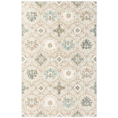 Andromedae  Gray Area Rug Rug Size: Rectangle 8 x 11