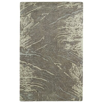 Virginis Brown Area Rug Rug Size: Rectangle 36 x 56