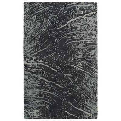 Virginis Hand-Tufted Charcoal Area Rug Rug Size: Rectangle 36 x 56