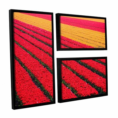 Floral Stripes I 3 Piece Framed Photographic Print Set